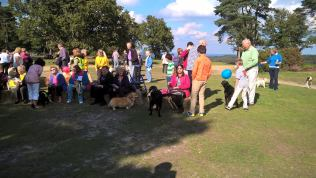 pet blessing 2015 13